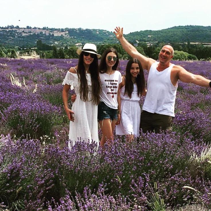 Provence family lavender